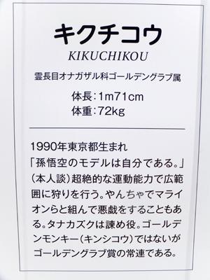 20170420k33x