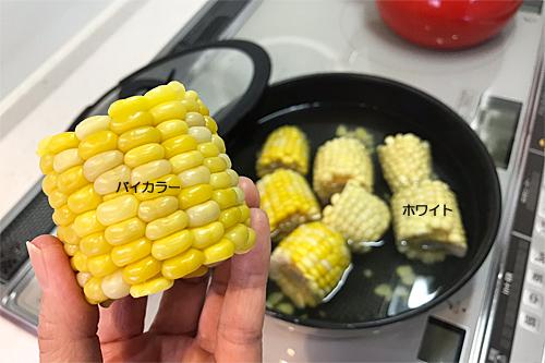 20180601トウモロコシ
