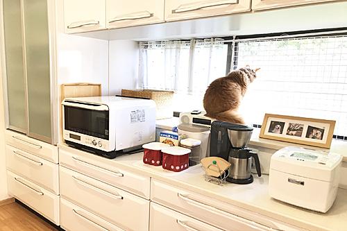 20200430キッチン