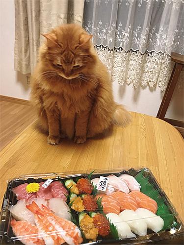 2021元旦お寿司